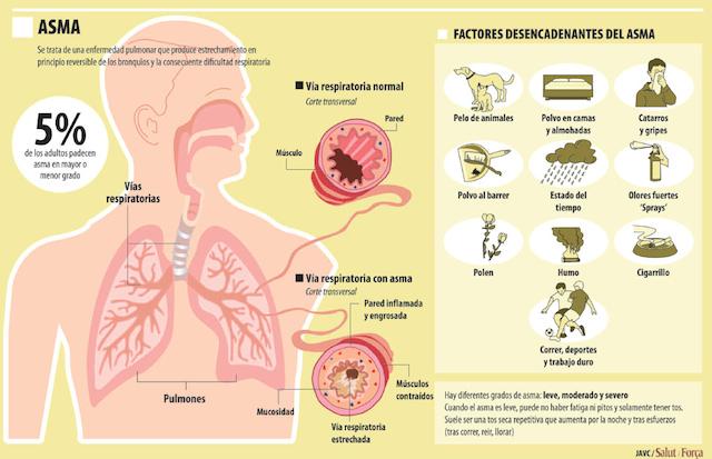 terapia-inhalada-consejos-para-pacientes-con-asma. copia