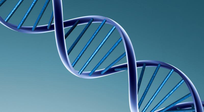 ¿Qué es el Proyecto Genoma Humano?