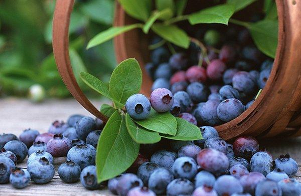 Alimentos para tener una piel bonita y saludable 5